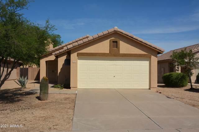 1052 E Greenlee Avenue, Apache Junction, AZ 85119 (MLS #6304127) :: Elite Home Advisors