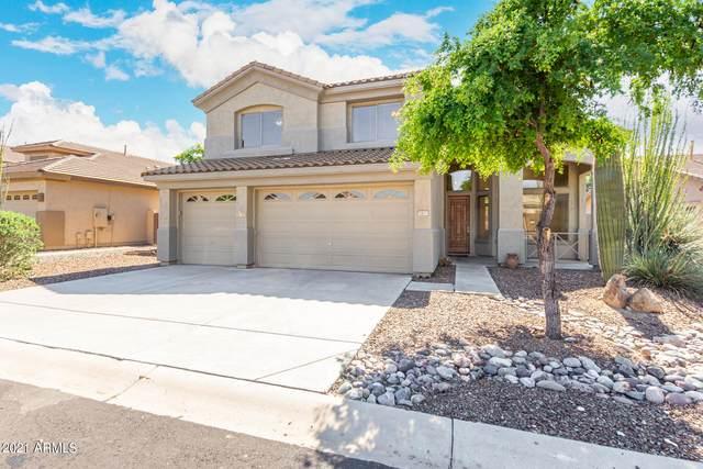 7413 E Nance Street, Mesa, AZ 85207 (MLS #6304180) :: Fred Delgado Real Estate Group