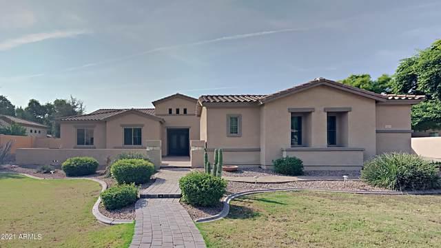 1955 E Scorpio Place, Chandler, AZ 85249 (MLS #6304197) :: Klaus Team Real Estate Solutions