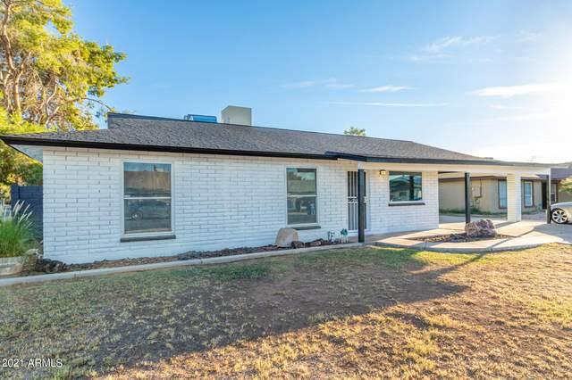 1061 E Hampton Avenue, Mesa, AZ 85204 (MLS #6304200) :: The Laughton Team
