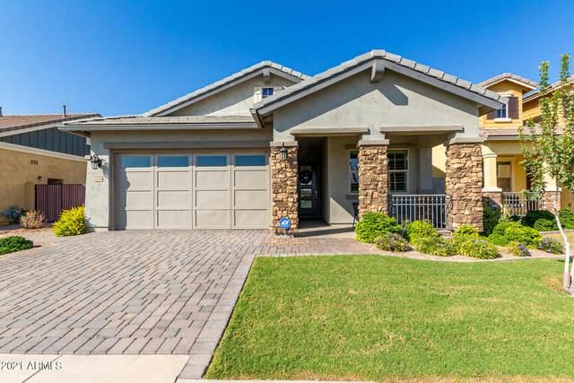 3066 E Spring Wheat Lane, Gilbert, AZ 85296 (MLS #6304216) :: Elite Home Advisors