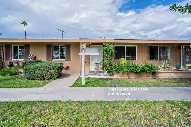 10584 W Oakmont Drive, Sun City, AZ 85351 (MLS #6304219) :: Elite Home Advisors