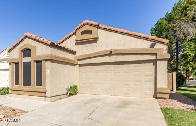 3440 E Southern Avenue #1214, Mesa, AZ 85204 (MLS #6304224) :: The Daniel Montez Real Estate Group