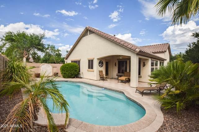 3839 E Timberline Court, Gilbert, AZ 85297 (MLS #6304266) :: Yost Realty Group at RE/MAX Casa Grande