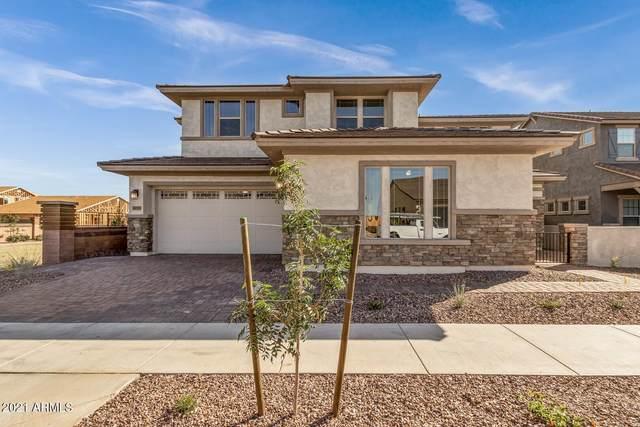 21059 E Reins Road, Queen Creek, AZ 85142 (MLS #6304312) :: Elite Home Advisors