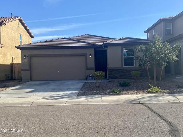 4379 W Federal Way, Queen Creek, AZ 85142 (MLS #6304326) :: Klaus Team Real Estate Solutions