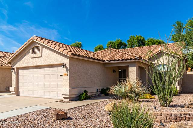 1040 W Seagull Drive, Chandler, AZ 85286 (MLS #6304356) :: The Riddle Group