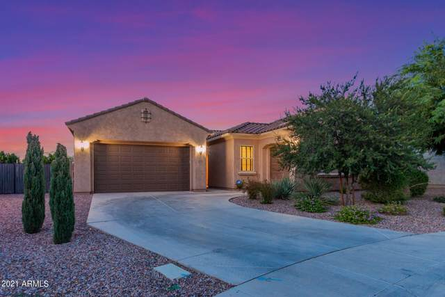 10828 E Tarragon Avenue, Mesa, AZ 85212 (MLS #6304395) :: Elite Home Advisors