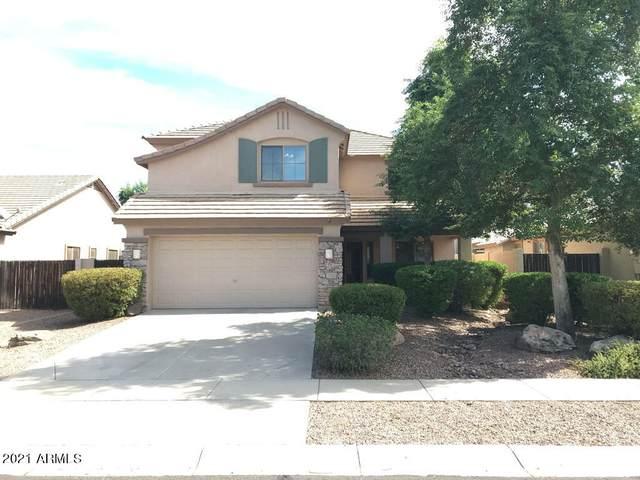 4367 S Mariposa Drive, Gilbert, AZ 85297 (MLS #6304418) :: Zolin Group