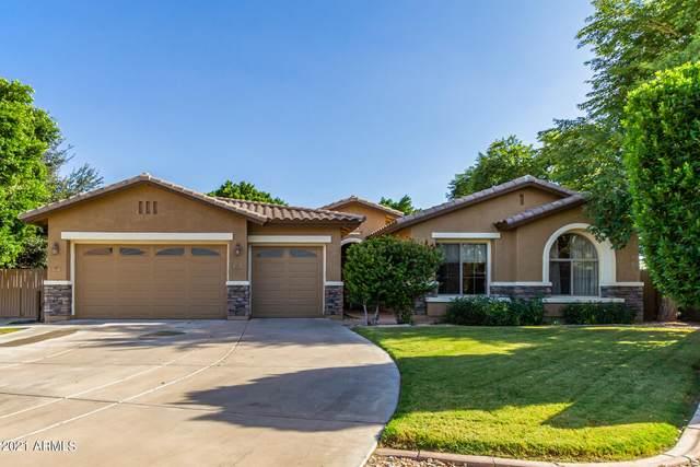 2921 E Hackamore Street, Mesa, AZ 85213 (MLS #6304444) :: Elite Home Advisors