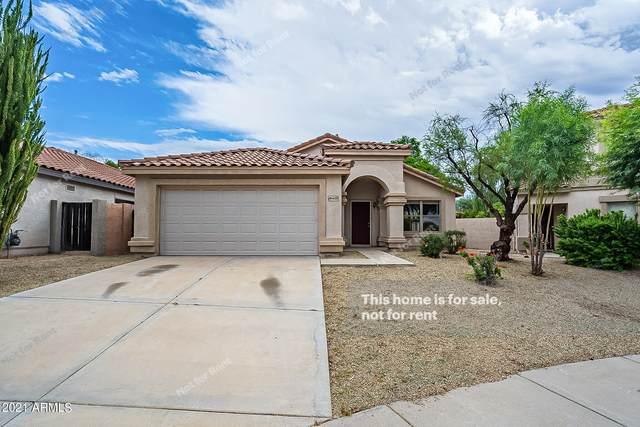 26403 N 41ST Street, Phoenix, AZ 85050 (MLS #6304494) :: Yost Realty Group at RE/MAX Casa Grande