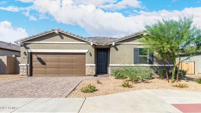 7132 S 34TH Drive, Phoenix, AZ 85041 (MLS #6304508) :: Yost Realty Group at RE/MAX Casa Grande