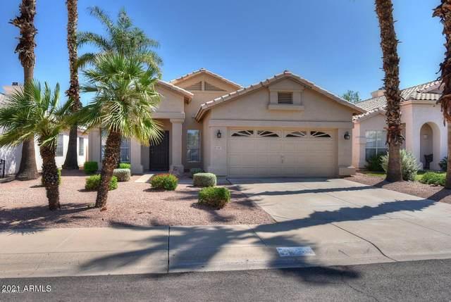 9287 E Karen Drive, Scottsdale, AZ 85260 (MLS #6304573) :: Howe Realty