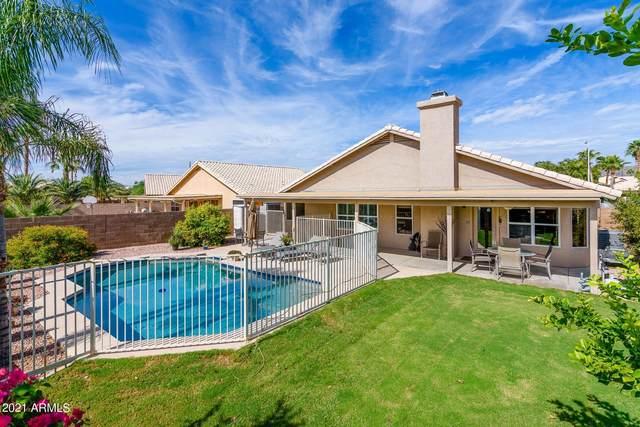 4115 E Cathedral Rock Drive, Phoenix, AZ 85044 (MLS #6304596) :: Yost Realty Group at RE/MAX Casa Grande