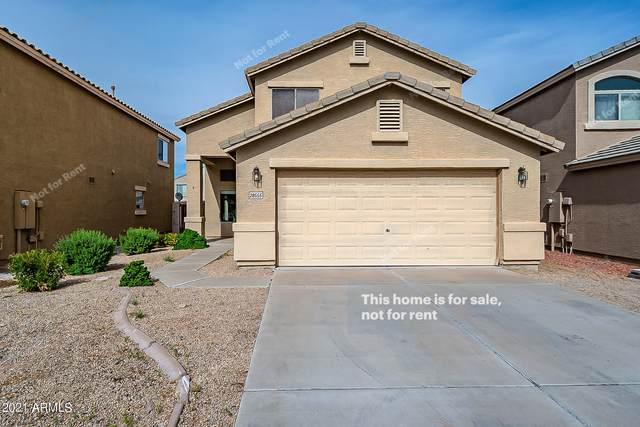 28555 N Dolomite Lane, San Tan Valley, AZ 85143 (MLS #6304627) :: Elite Home Advisors