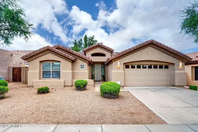 4375 E Briles Road, Phoenix, AZ 85050 (MLS #6304672) :: Elite Home Advisors