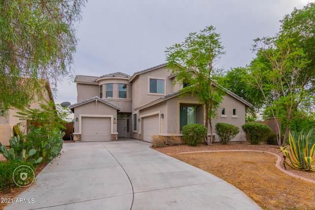 29869 W Mitchell Avenue, Buckeye, AZ 85396 (MLS #6304756) :: Yost Realty Group at RE/MAX Casa Grande