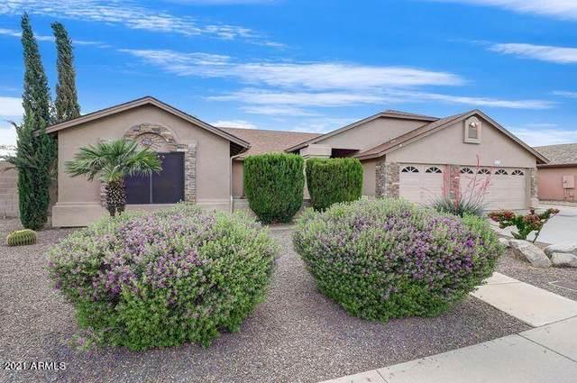 6268 N 88th Avenue, Glendale, AZ 85305 (MLS #6304757) :: Yost Realty Group at RE/MAX Casa Grande