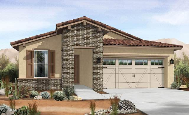 9067 S 167 Avenue, Goodyear, AZ 85338 (MLS #6304779) :: The Property Partners at eXp Realty