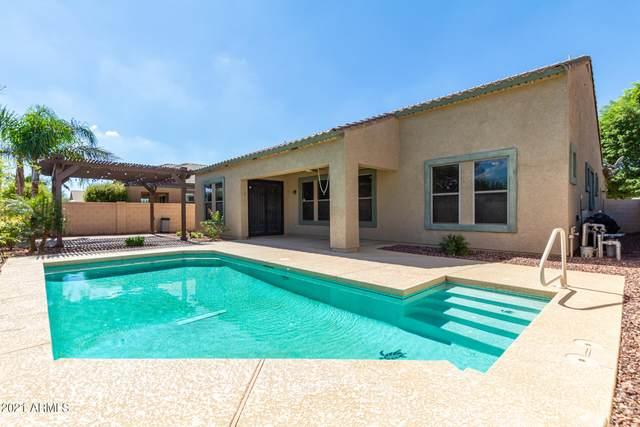23325 N 119TH Drive, Sun City, AZ 85373 (MLS #6304820) :: Yost Realty Group at RE/MAX Casa Grande
