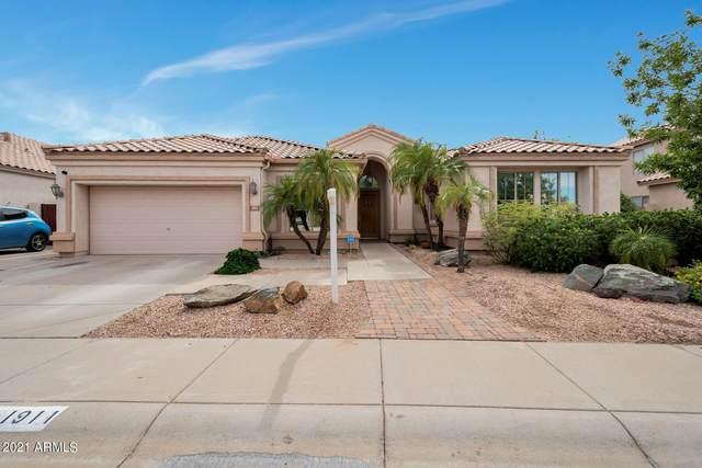 1911 W Bluebird Drive, Chandler, AZ 85286 (MLS #6304833) :: Zolin Group
