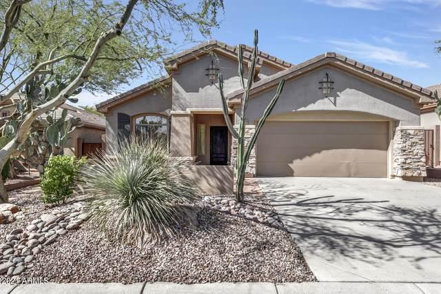 1879 W Dion Drive, Phoenix, AZ 85086 (MLS #6304869) :: The Daniel Montez Real Estate Group