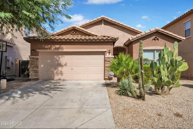 44 W Desert Vista Trail, San Tan Valley, AZ 85143 (MLS #6304871) :: Dijkstra & Co.