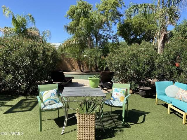 28382 N Gold Lane, San Tan Valley, AZ 85143 (MLS #6304879) :: Conway Real Estate