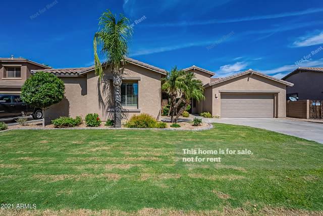 2732 E Zion Way, Chandler, AZ 85249 (MLS #6304901) :: The Daniel Montez Real Estate Group