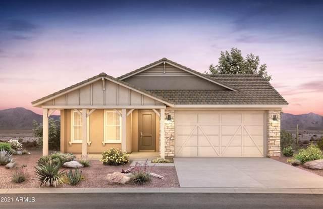 32450 N 133RD Avenue, Peoria, AZ 85383 (MLS #6304903) :: Elite Home Advisors