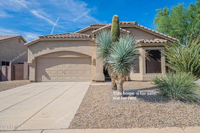 2862 N Rowen Circle, Mesa, AZ 85207 (MLS #6304961) :: Elite Home Advisors