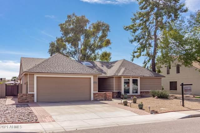 1223 W Citation Drive, Chandler, AZ 85224 (MLS #6304978) :: Arizona Home Group