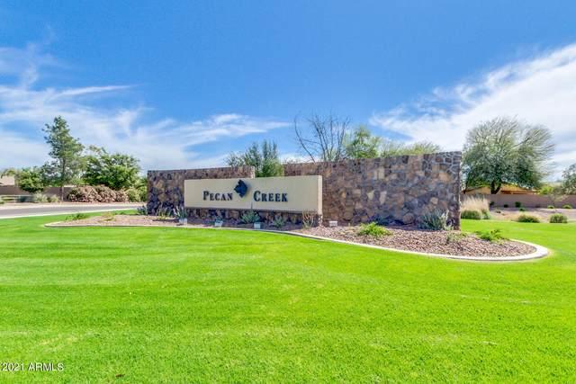 39183 N Cali Circle, San Tan Valley, AZ 85140 (MLS #6305004) :: Elite Home Advisors