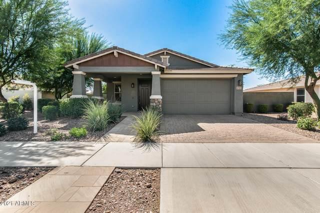 10355 E Tripoli Avenue, Mesa, AZ 85212 (MLS #6305005) :: Klaus Team Real Estate Solutions