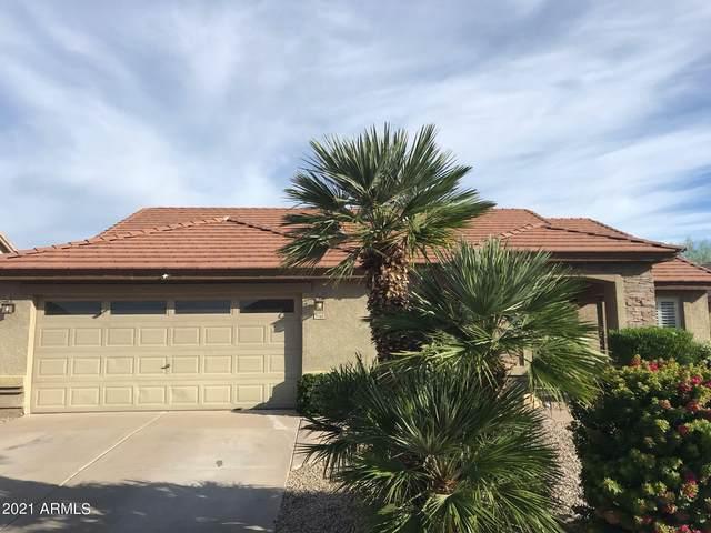 9760 E Juanita Avenue, Mesa, AZ 85209 (MLS #6305006) :: Elite Home Advisors