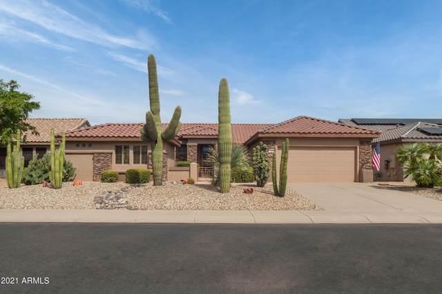 15808 W Joshua Tree Drive, Surprise, AZ 85374 (MLS #6305020) :: Elite Home Advisors