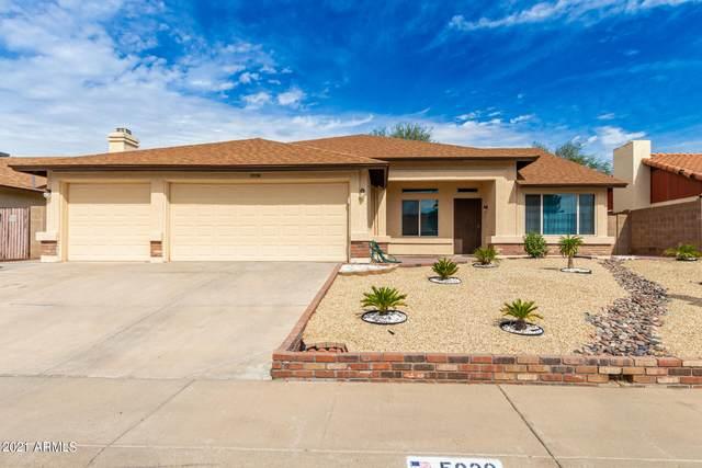 5930 W Garden Drive, Glendale, AZ 85304 (MLS #6305035) :: Long Realty West Valley