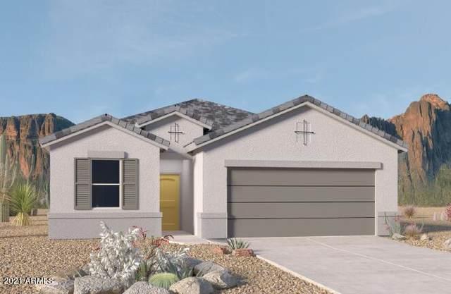 3527 N Montoya Lane, Casa Grande, AZ 85122 (MLS #6305039) :: Elite Home Advisors