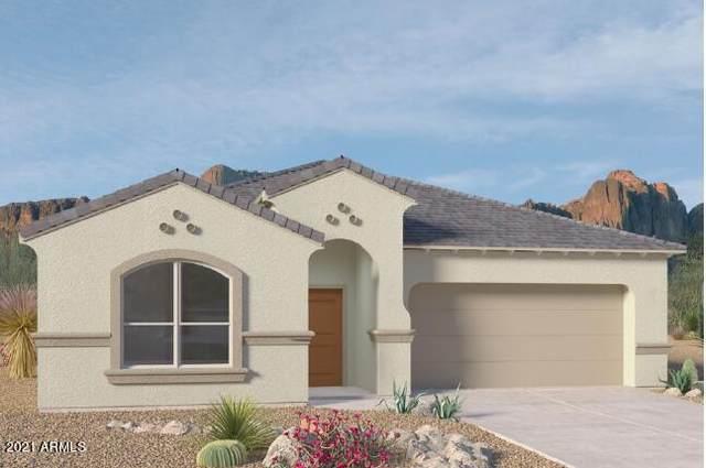 3523 N Montoya Lane, Casa Grande, AZ 85122 (MLS #6305045) :: Elite Home Advisors