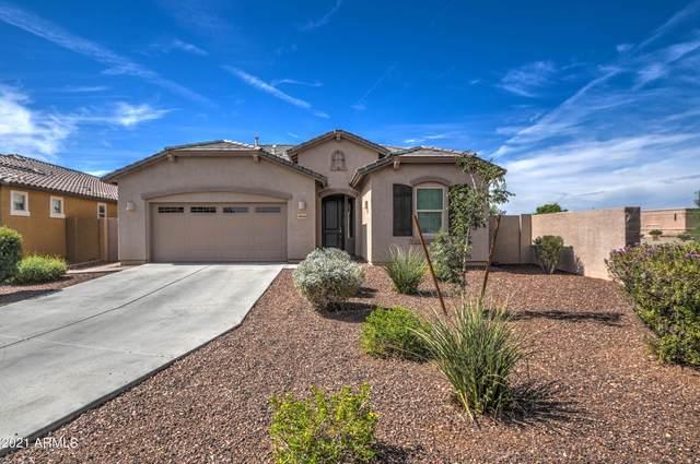 4866 S Wade Drive, Gilbert, AZ 85298 (MLS #6305049) :: Yost Realty Group at RE/MAX Casa Grande