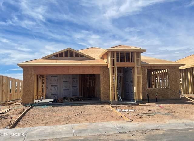 3539 N Montoya Lane, Casa Grande, AZ 85122 (MLS #6305063) :: Elite Home Advisors