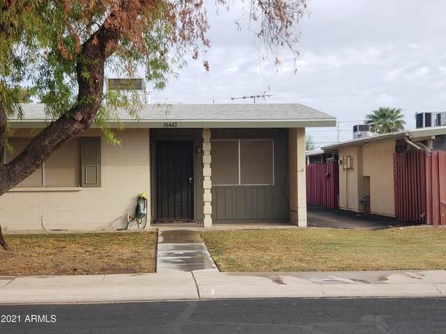 10442 W Deanne Drive, Sun City, AZ 85351 (MLS #6305087) :: Long Realty West Valley