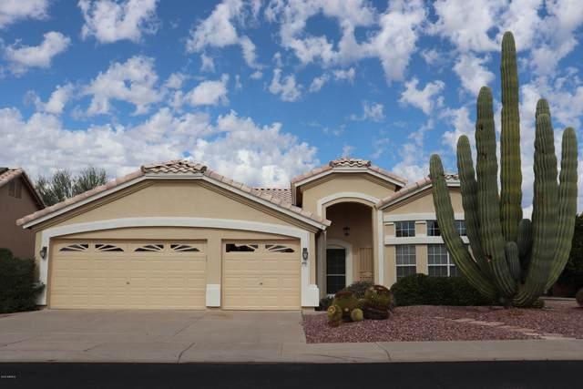 6946 W Robin Lane, Glendale, AZ 85310 (MLS #6305106) :: Long Realty West Valley