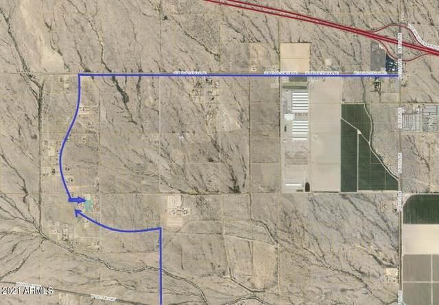 271X N Saddle Vista Road, Tonopah, AZ 85354 (MLS #6305146) :: Fred Delgado Real Estate Group
