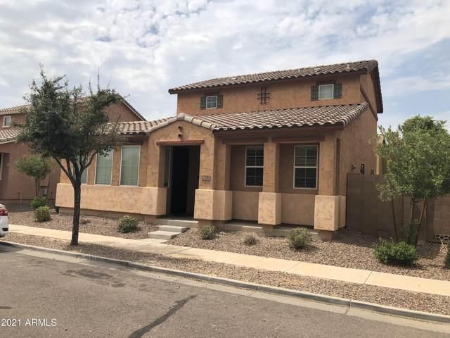 7228 S 48TH Lane, Laveen, AZ 85339 (MLS #6305160) :: Hurtado Homes Group