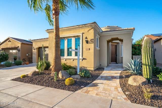 1696 E Alegria Road, Queen Creek, AZ 85140 (MLS #6305221) :: Elite Home Advisors