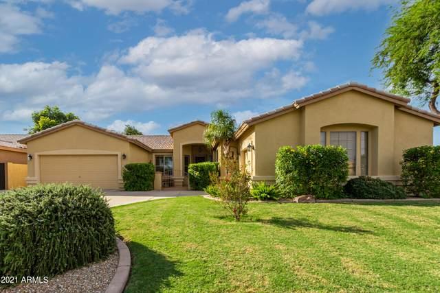 2181 W Maplewood Street, Chandler, AZ 85286 (MLS #6305281) :: Elite Home Advisors