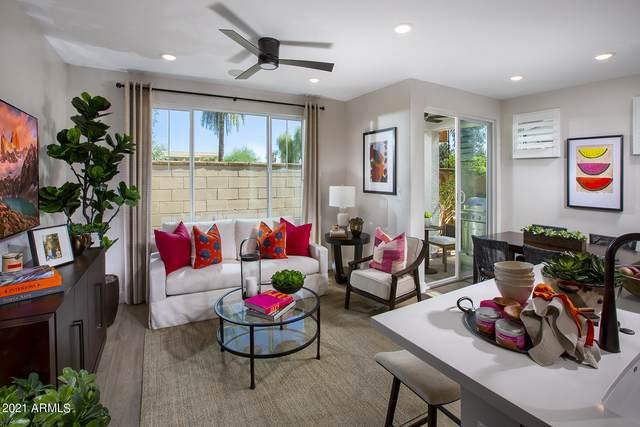 2767 S Chippewa Drive, Chandler, AZ 85286 (MLS #6305333) :: Klaus Team Real Estate Solutions