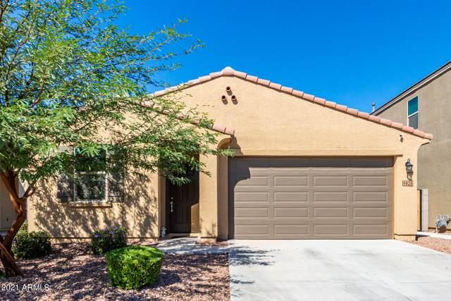9828 W Atlantis Way, Tolleson, AZ 85353 (MLS #6305359) :: Hurtado Homes Group