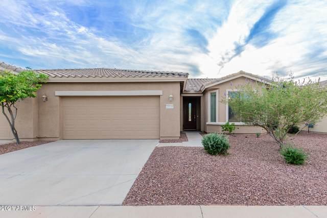 20310 N Goodman Road, Maricopa, AZ 85138 (MLS #6305372) :: Yost Realty Group at RE/MAX Casa Grande